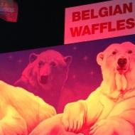 Nav saprotams, kāds baltajiem lāčiem sakars ar beļģu vafelēm