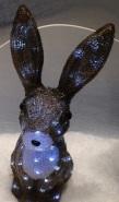 Pirmais ieraudzītais skatloga zvērs - briljantu zaķis